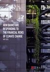 How-banks-are-responding-to-the-financial-risks-of-climate-change